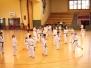 Kukkiwon Demo-Team Seminar
